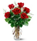 6 Red Roses from Ashland Florist in Lexington, KY