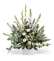 White Expressions Basket from Ashland Florist in Lexington, KY